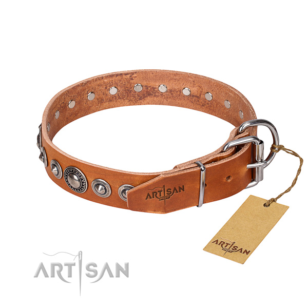 Everyday leather collar for your handsome canine