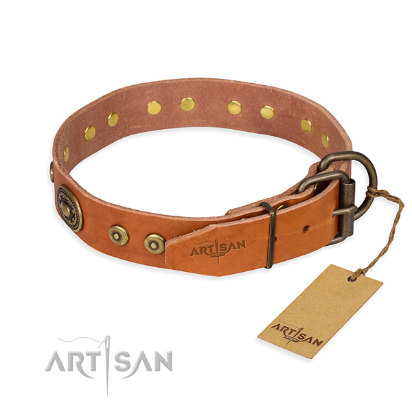 Tear-proof leather collar for your elegant pet