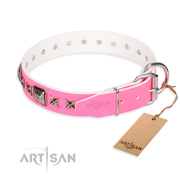 Stylish leather collar for your handsome canine