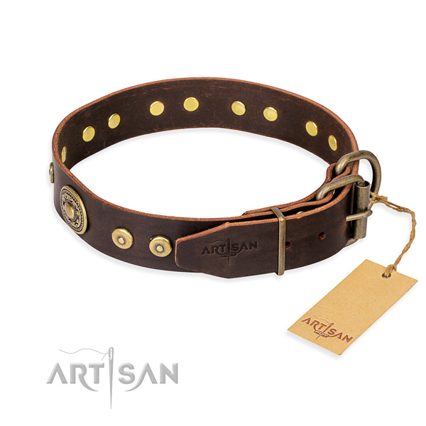 Durable leather collar for your darling four-legged friend