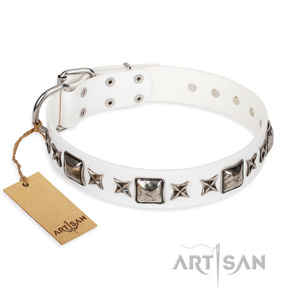 Practical leather collar for your elegant dog