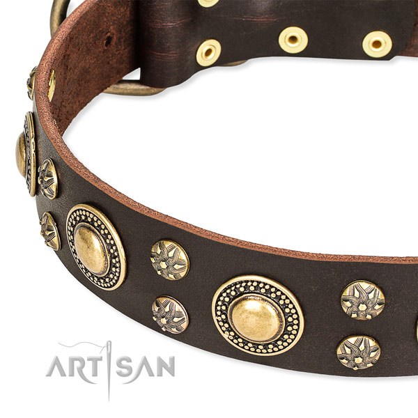 Easy to put on/off leather dog collar with extra sturdy hardware