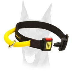 All weather nylon Doberman collar