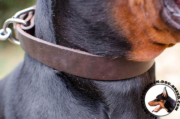 Comfortable Doberman leather collar