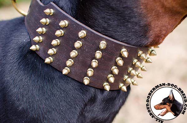 Handcrafted leather Doberman collar with spikes