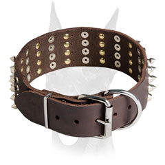 Nickel hardware and rivets for Doberman collar