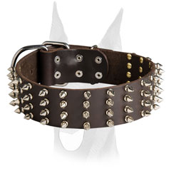 Spiked Doberman collar