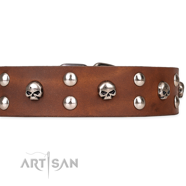 Durable leather dog collar with non-corrosive hardware