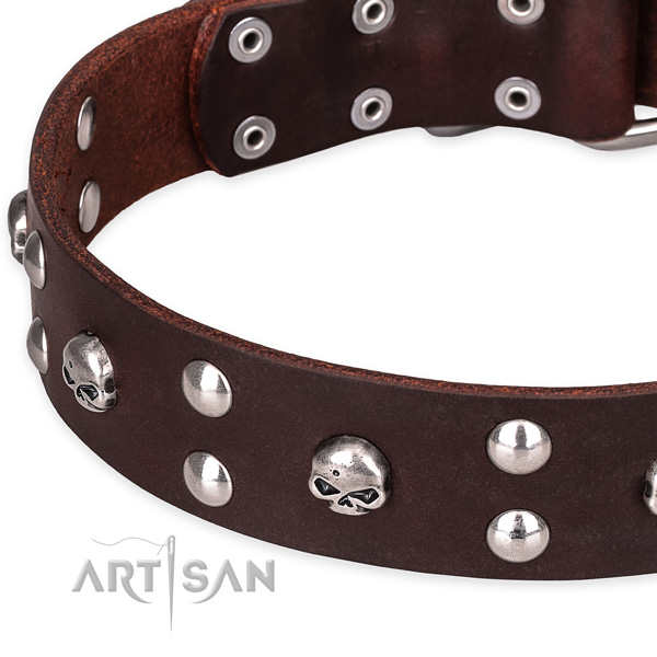 Leather dog collar with worked out edges for comfy daily wearing