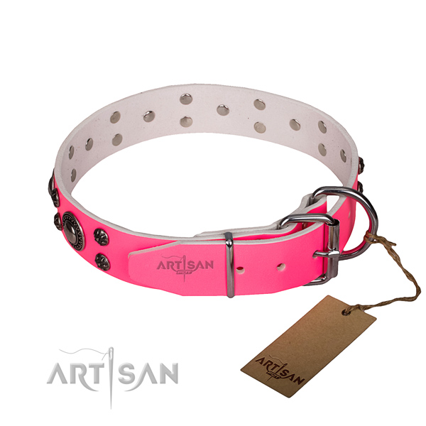 Practical leather collar for your stunning pet