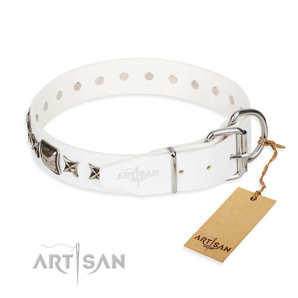 Reliable leather dog collar with reliable details