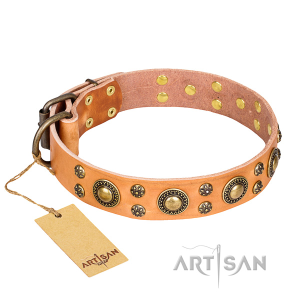 Strong leather dog collar with durable elements