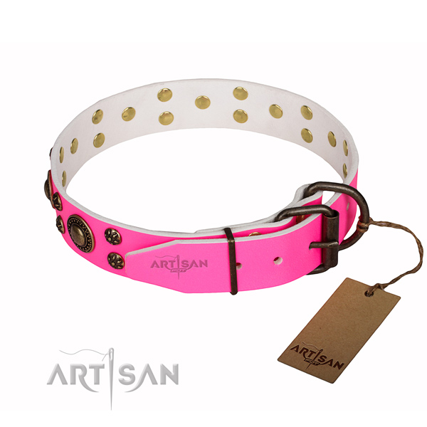 Fashionable leather collar for your elegant dog