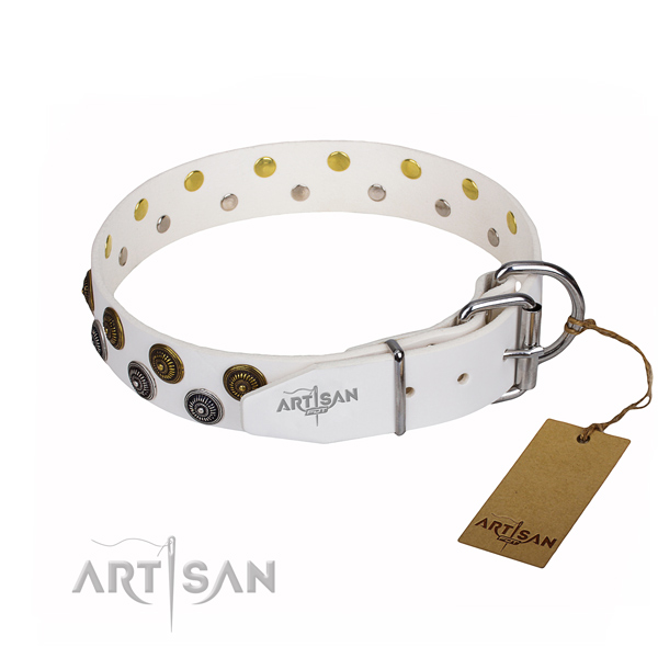 Everyday leather collar for your beloved dog