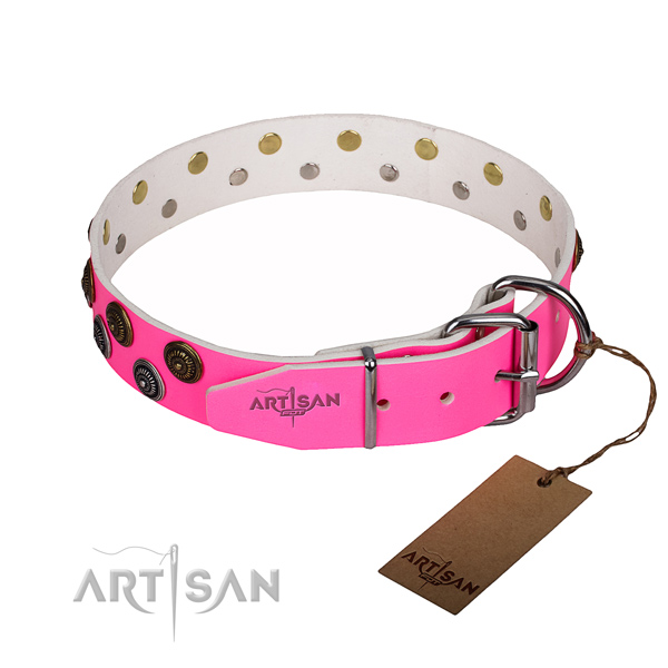 Fashionable leather collar for your favourite pet