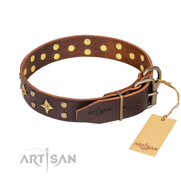 Multifunctional leather collar for your favourite four-legged friend