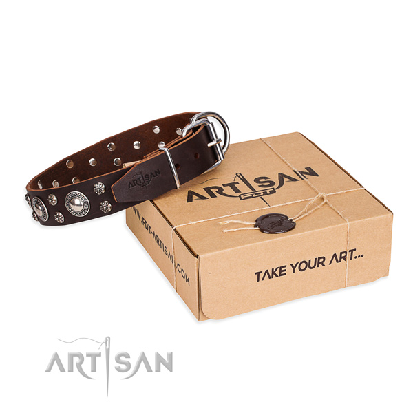 Everyday leather dog collar with elegant studs