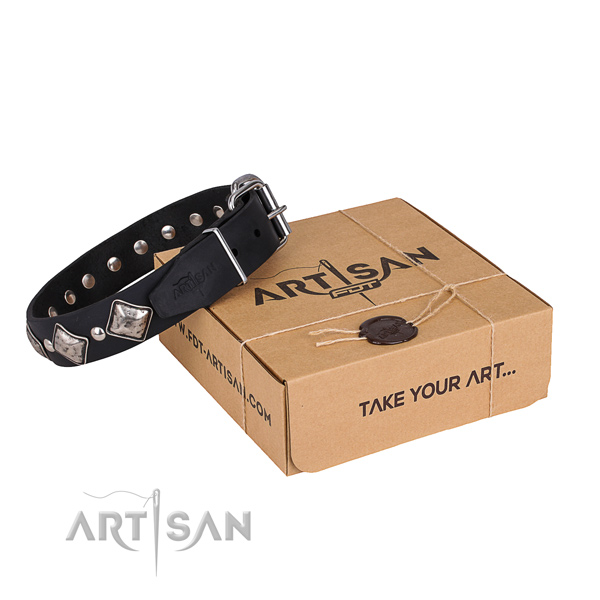 Daily leather dog collar with cute studs