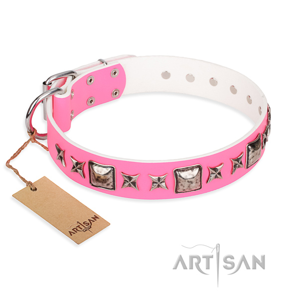 Long-wearing leather dog collar with non-rusting details