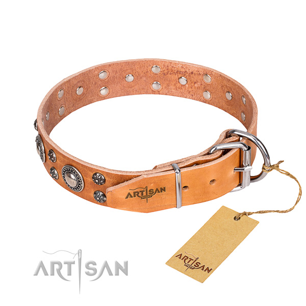 Versatile leather collar for your noble four-legged friend