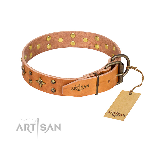 Practical leather collar for your noble canine