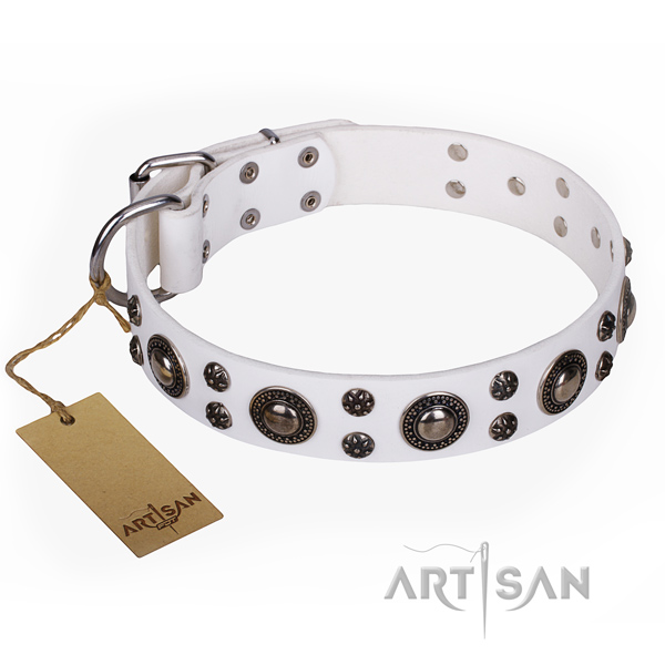 Durable leather dog collar with rust-proof fittings