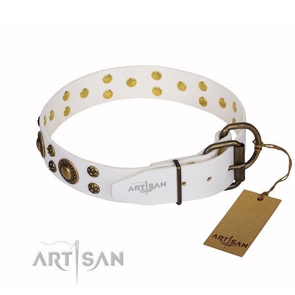 Hardwearing leather dog collar with reliable fittings