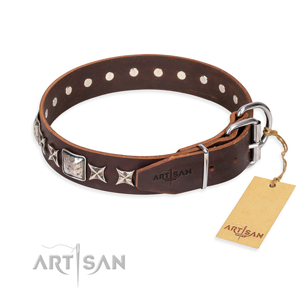Fashionable leather collar for your favourite dog