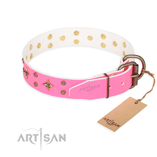 Stylish leather collar for your handsome four-legged friend