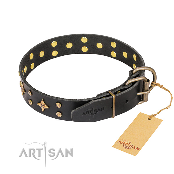 Daily leather collar for your favourite four-legged friend