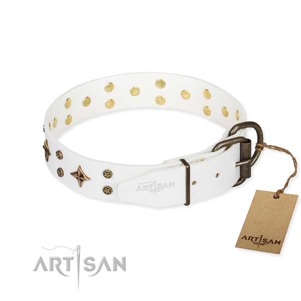 Practical leather collar for your elegant canine