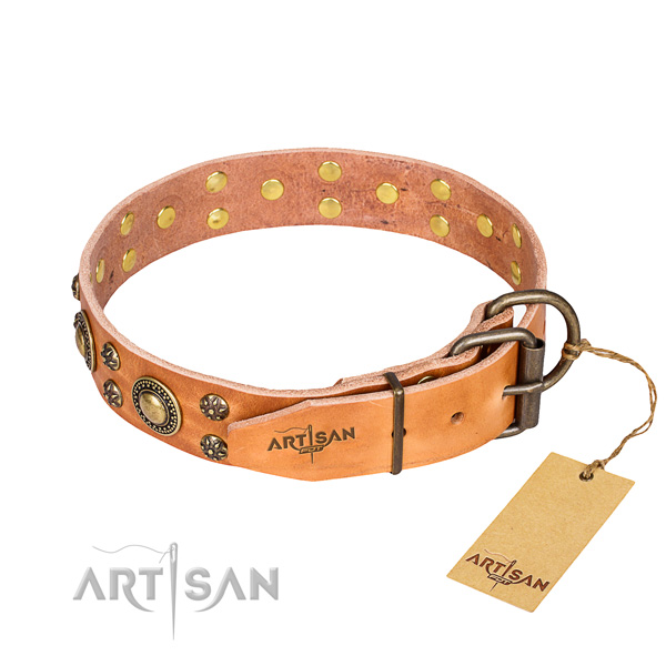 Daily leather collar for your darling canine