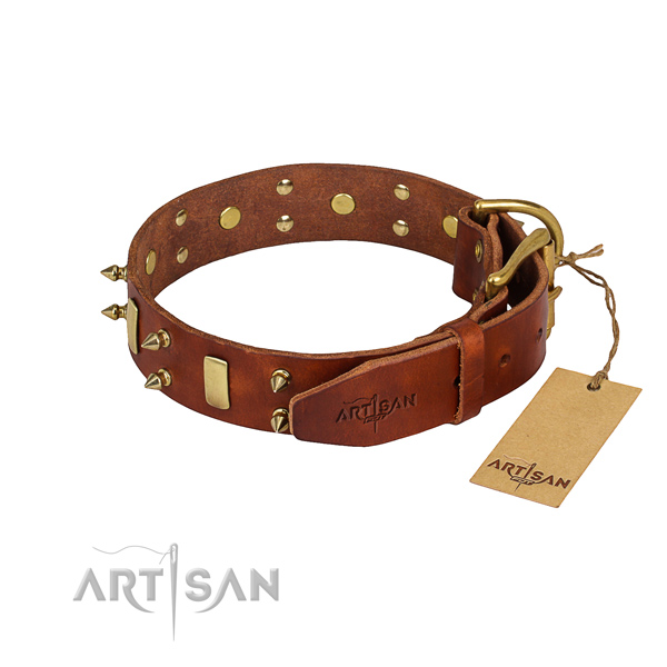 Natural leather dog collar with polished finish