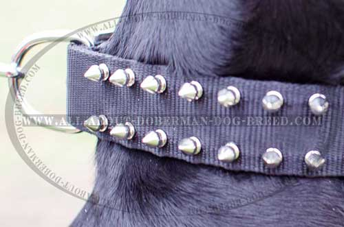 Spiked nylon Doberman collar