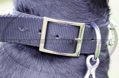 Durable nickel hardware for nylon Doberman collar