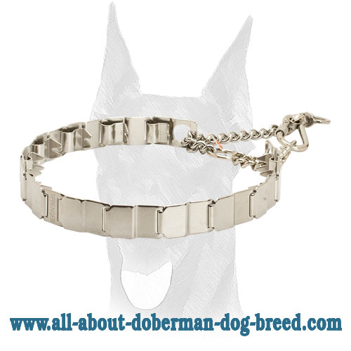Stainless steel neck tech collar for Doberman