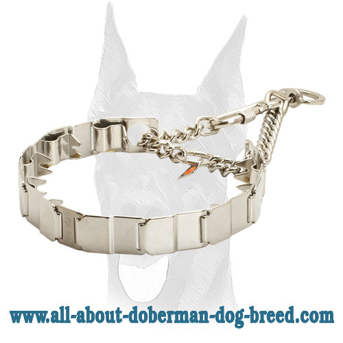 Neck tech pinch Doberman collar of stainless steel