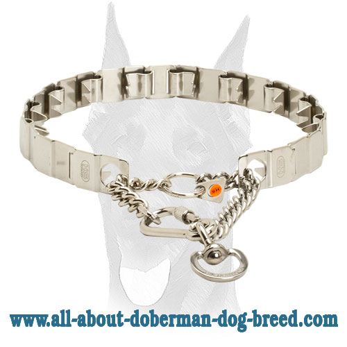Pinch Doberman collar with solid snap hook