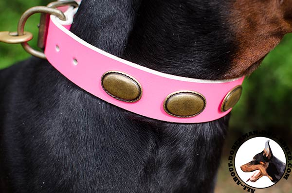 Pink leather collar with old brass plates
