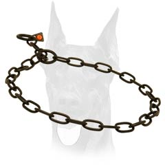 Obedience training black metal collar