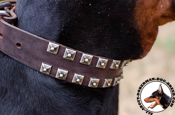2 rows studs Doberman leather collar