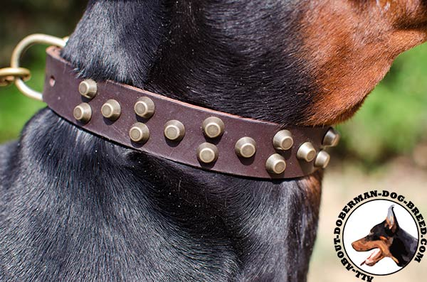 Super soft leather Doberman collar