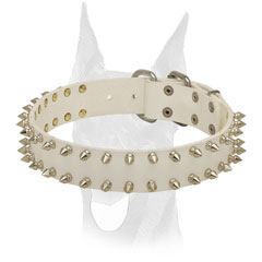 Elegant white leather Doberman collar