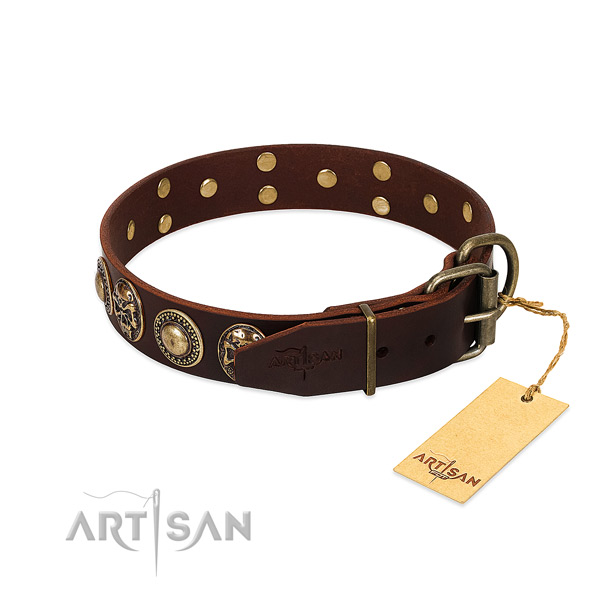 Walking genuine leather collar with adornments for your pet