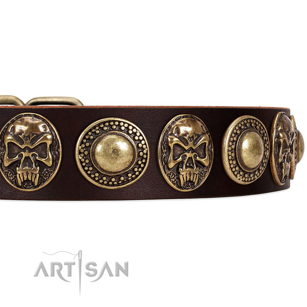 Natural genuine leather dog collar with studs for everyday use