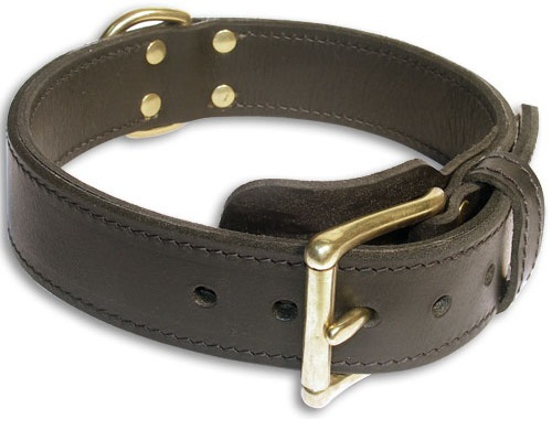 Double Layer Collar 1 3/4 inch for Doberman