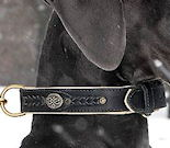 Doberman Dog Collars