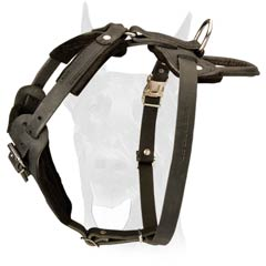 Leather Dog Harness with Soft Adjustable Straps