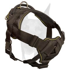 Soft padded chest plate Doberman harness