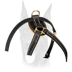Exclusive style Doberman harness